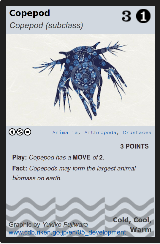 Copepod Phylo card
